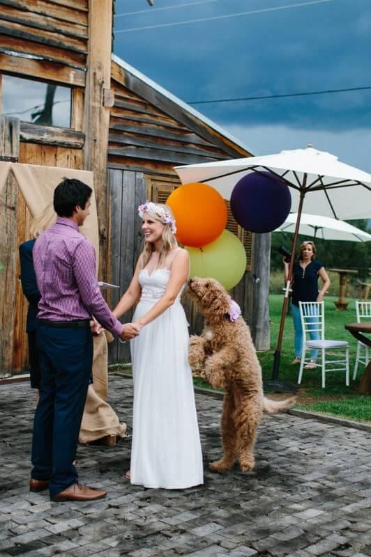 wedding-paul-alyce